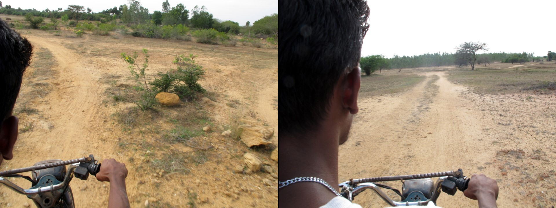 Ravi driving me on the back of his TVS through the rough dirt roads to see the bullock race